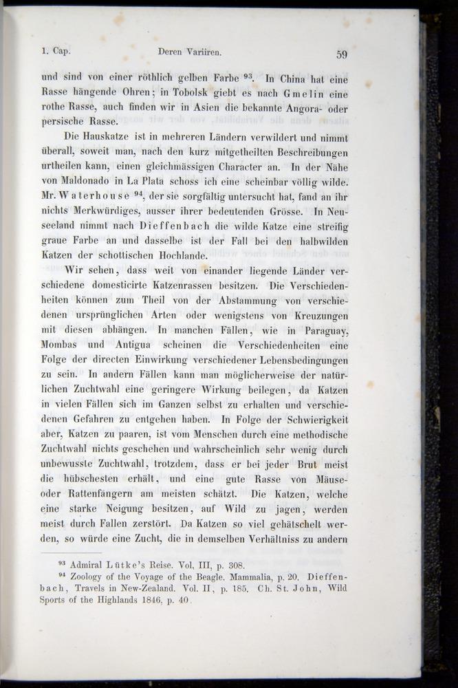 Image of Darwin-F914.1-1868-00059