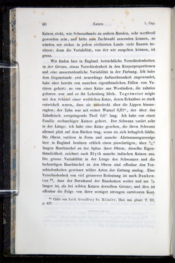 Image of Darwin-F914.1-1868-00060