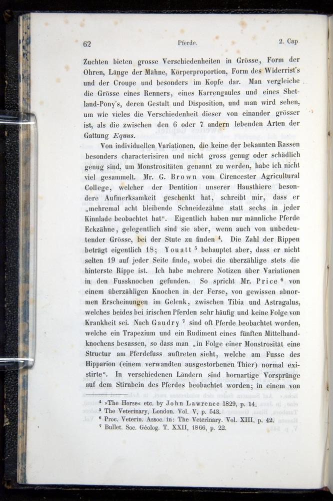 Image of Darwin-F914.1-1868-00062