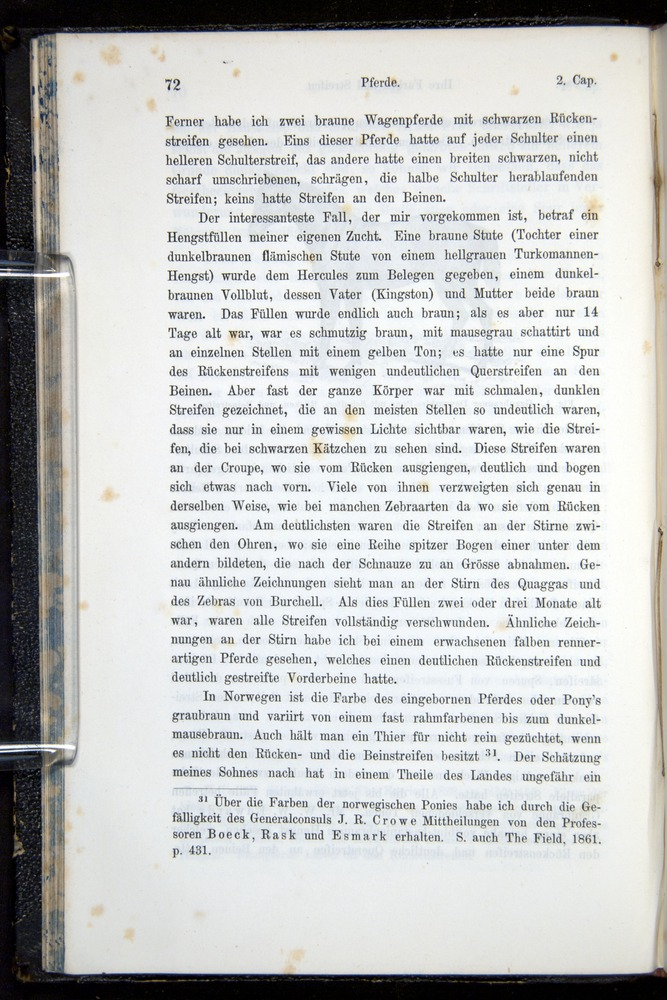 Image of Darwin-F914.1-1868-00072
