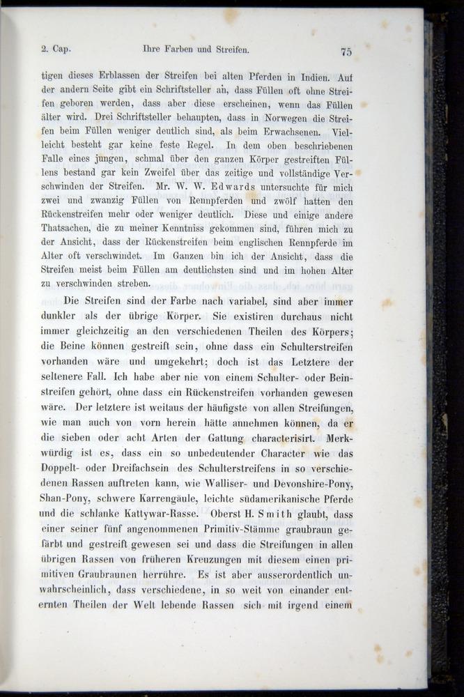 Image of Darwin-F914.1-1868-00075