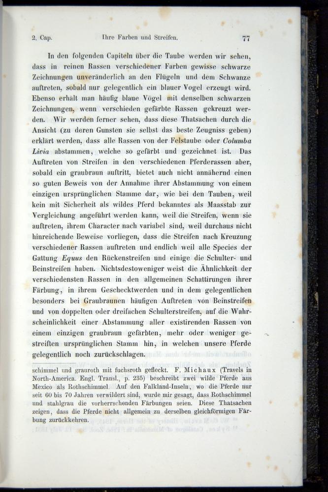 Image of Darwin-F914.1-1868-00077