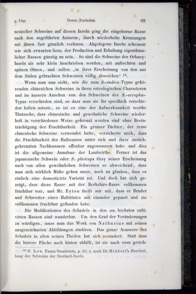 Image of Darwin-F914.1-1868-00089