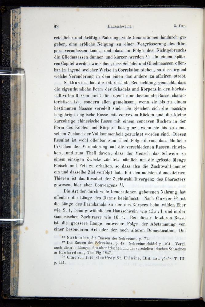 Image of Darwin-F914.1-1868-00092
