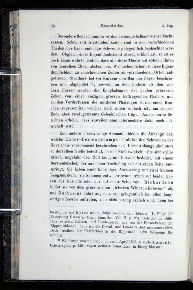 Image of Darwin-F914.1-1868-00094