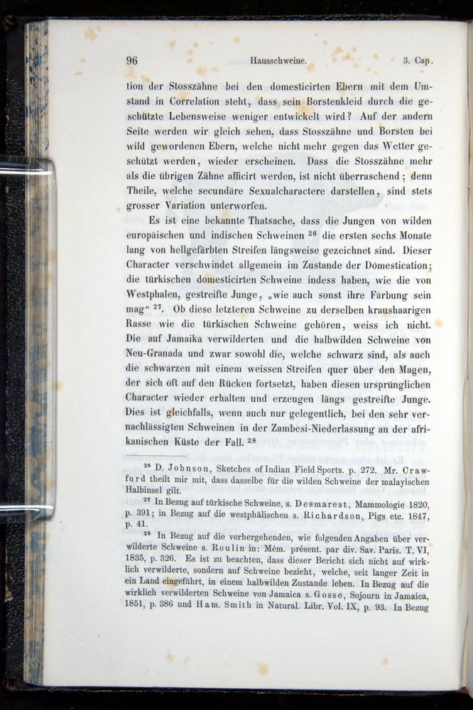 Image of Darwin-F914.1-1868-00096