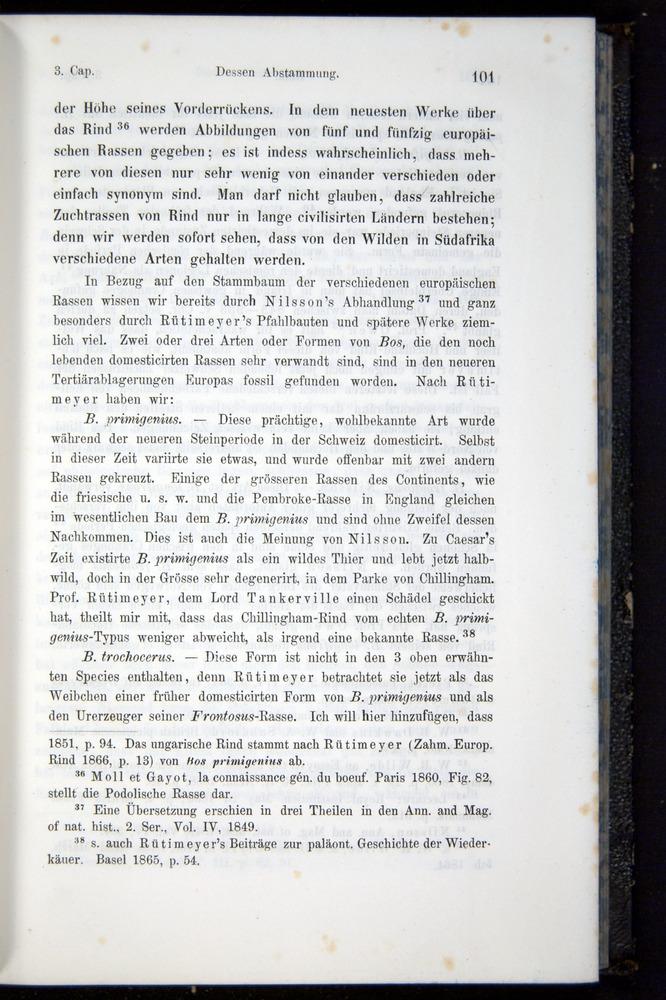 Image of Darwin-F914.1-1868-00101