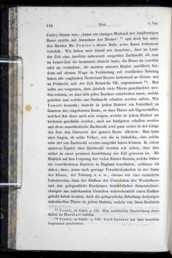 Image of Darwin-F914.1-1868-00116