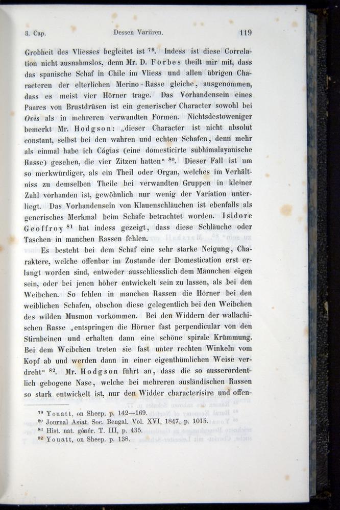 Image of Darwin-F914.1-1868-00119