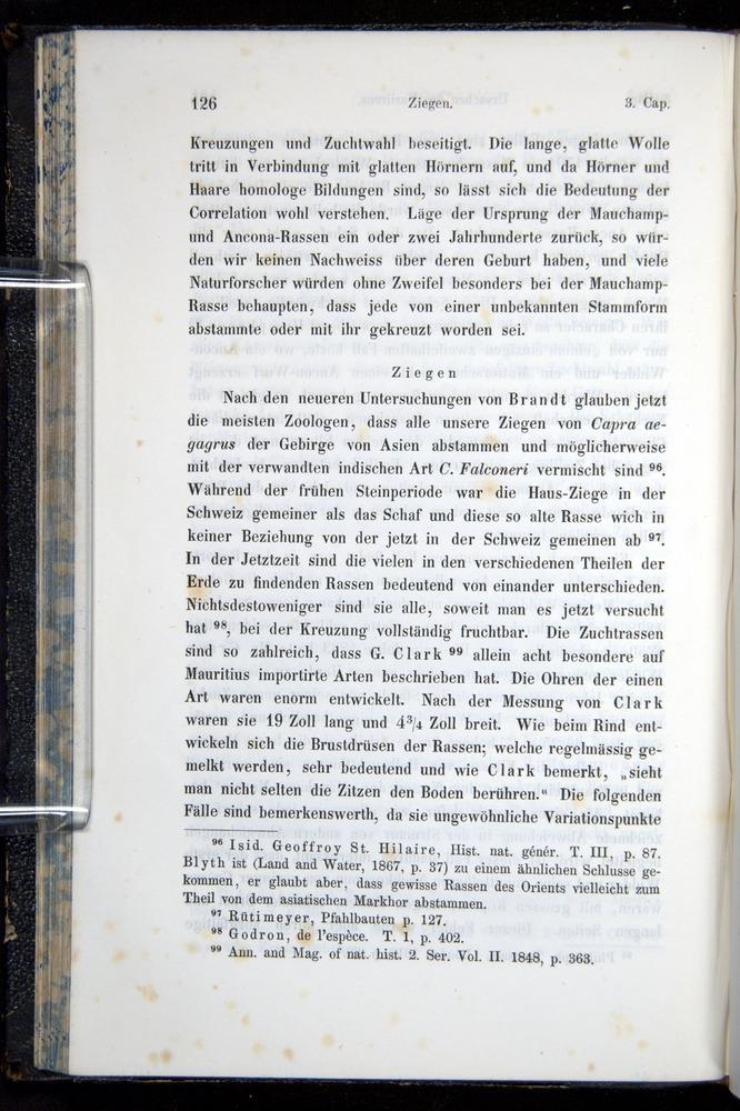 Image of Darwin-F914.1-1868-00126