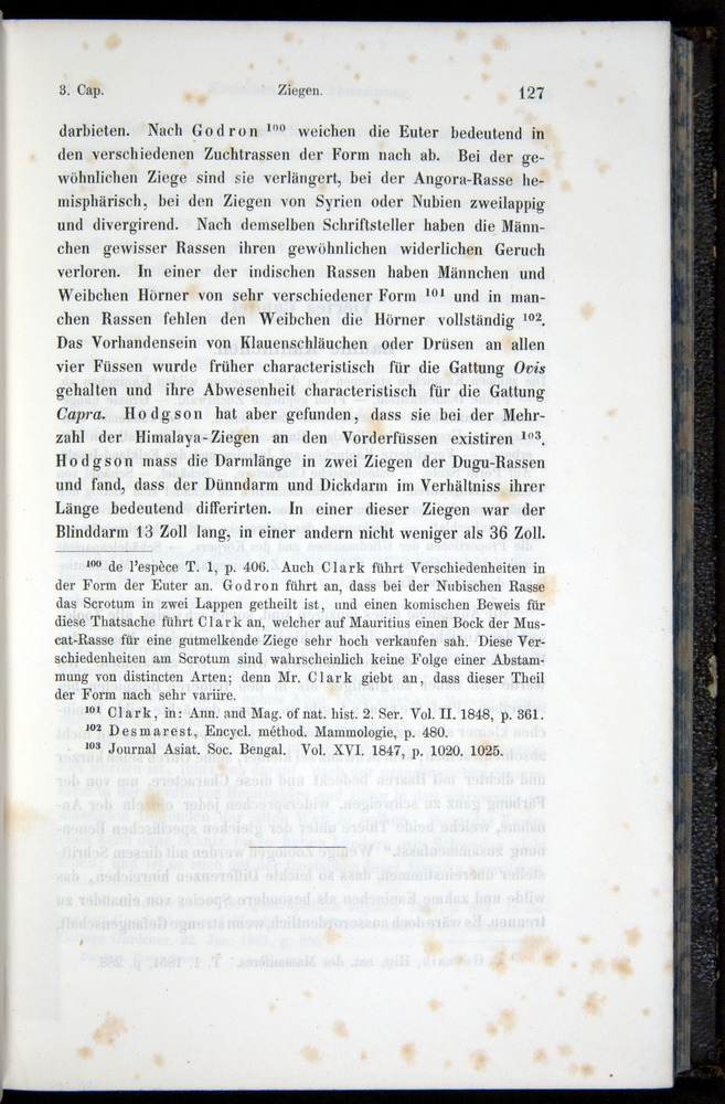 Image of Darwin-F914.1-1868-00127