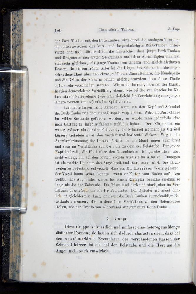 Image of Darwin-F914.1-1868-00180