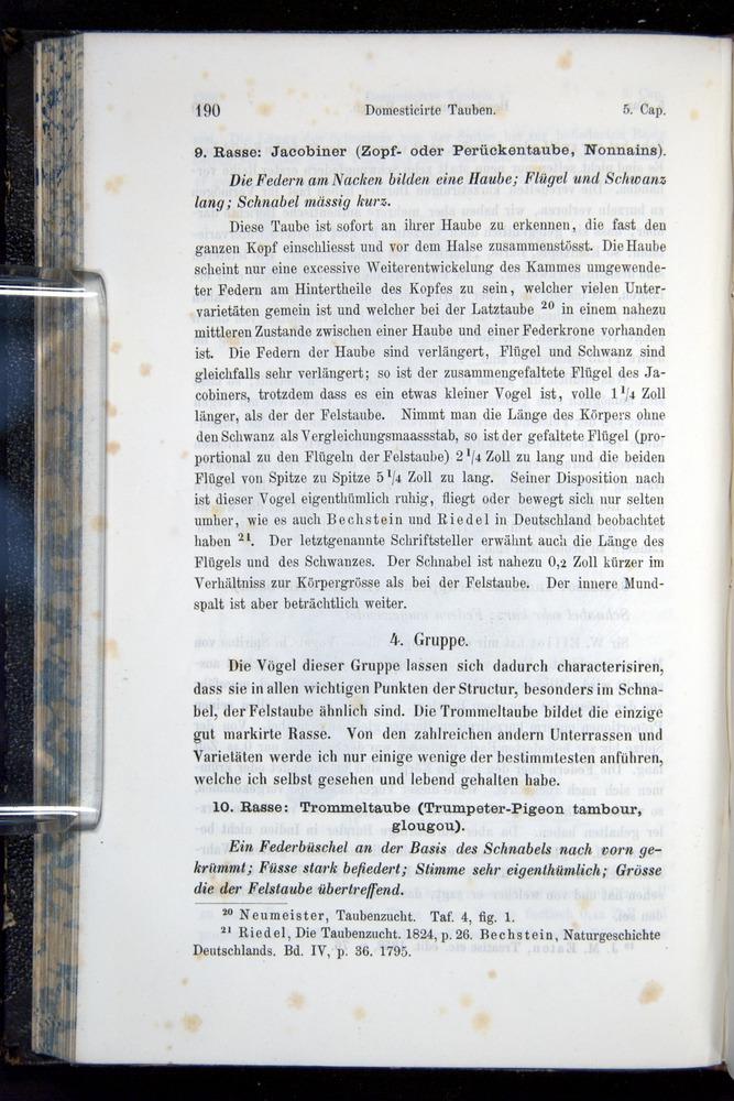 Image of Darwin-F914.1-1868-00190