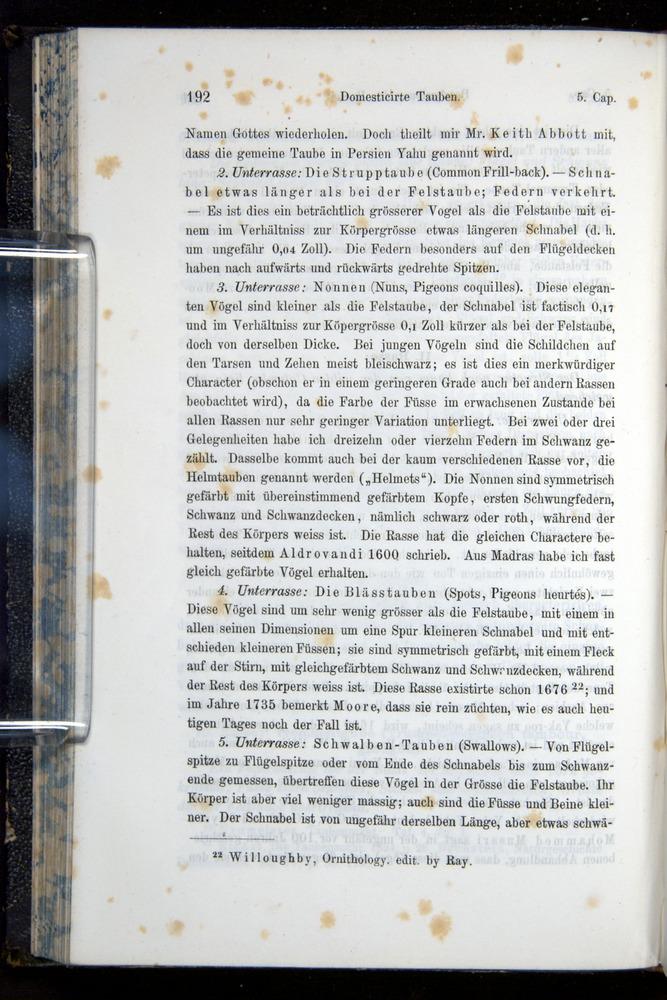 Image of Darwin-F914.1-1868-00192