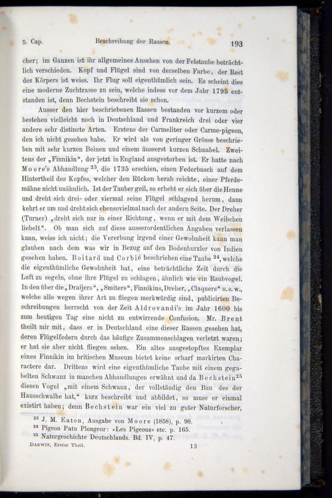 Image of Darwin-F914.1-1868-00193