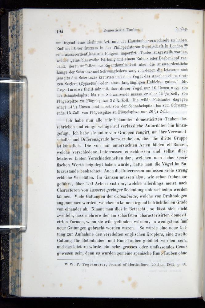Image of Darwin-F914.1-1868-00194