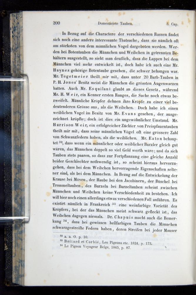 Image of Darwin-F914.1-1868-00200