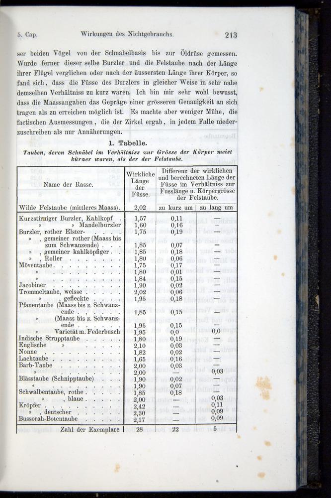 Image of Darwin-F914.1-1868-00213