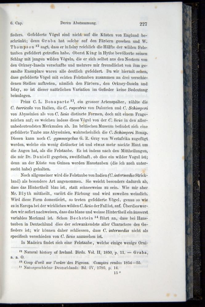 Image of Darwin-F914.1-1868-00227