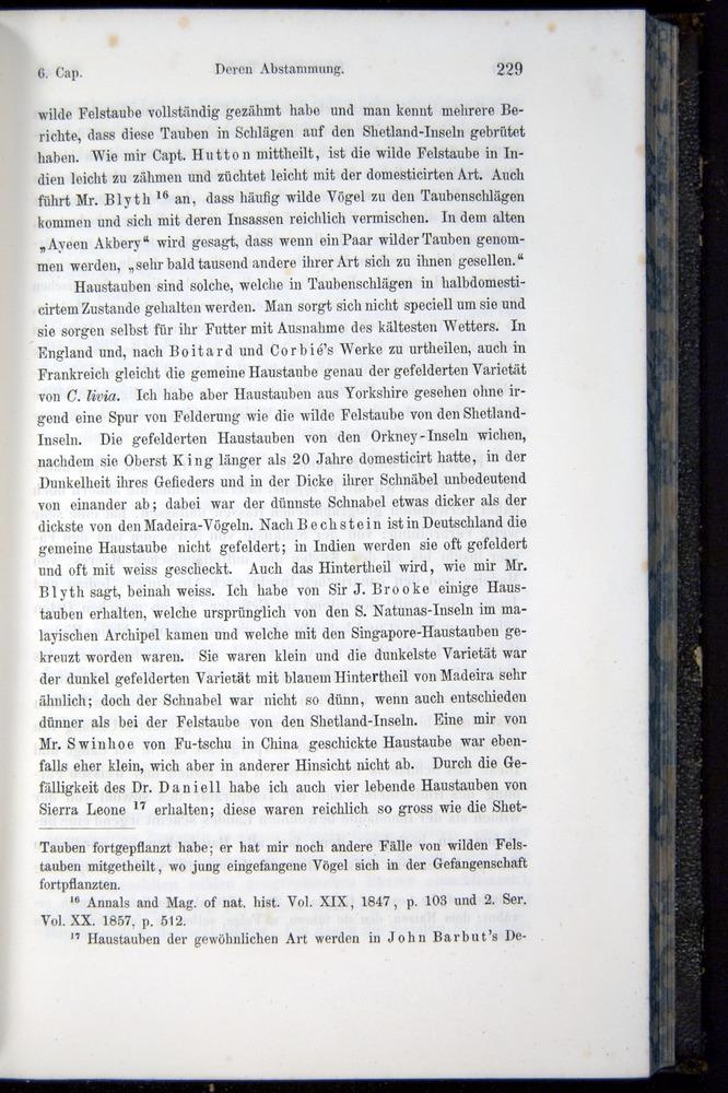 Image of Darwin-F914.1-1868-00229