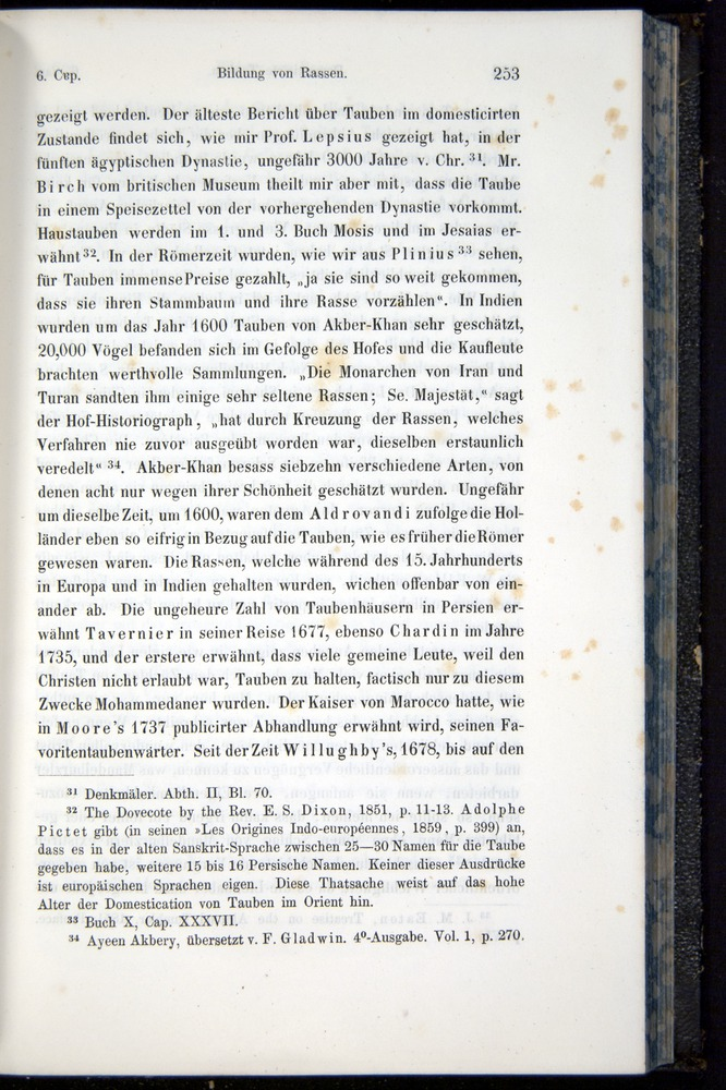 Image of Darwin-F914.1-1868-00253