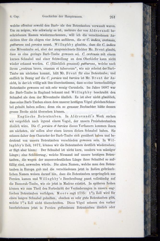 Image of Darwin-F914.1-1868-00261