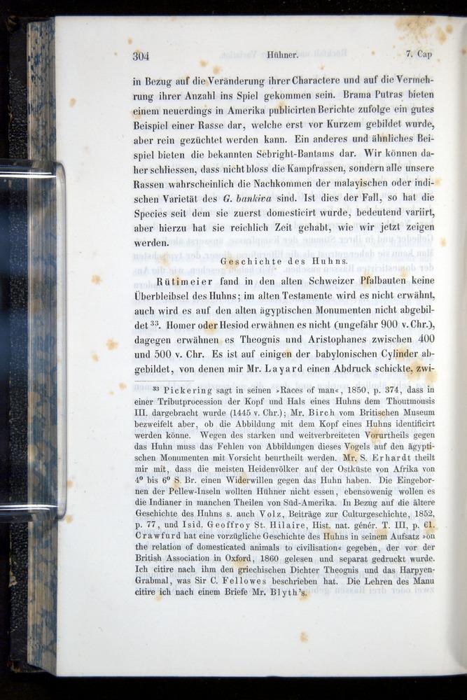 Image of Darwin-F914.1-1868-00304