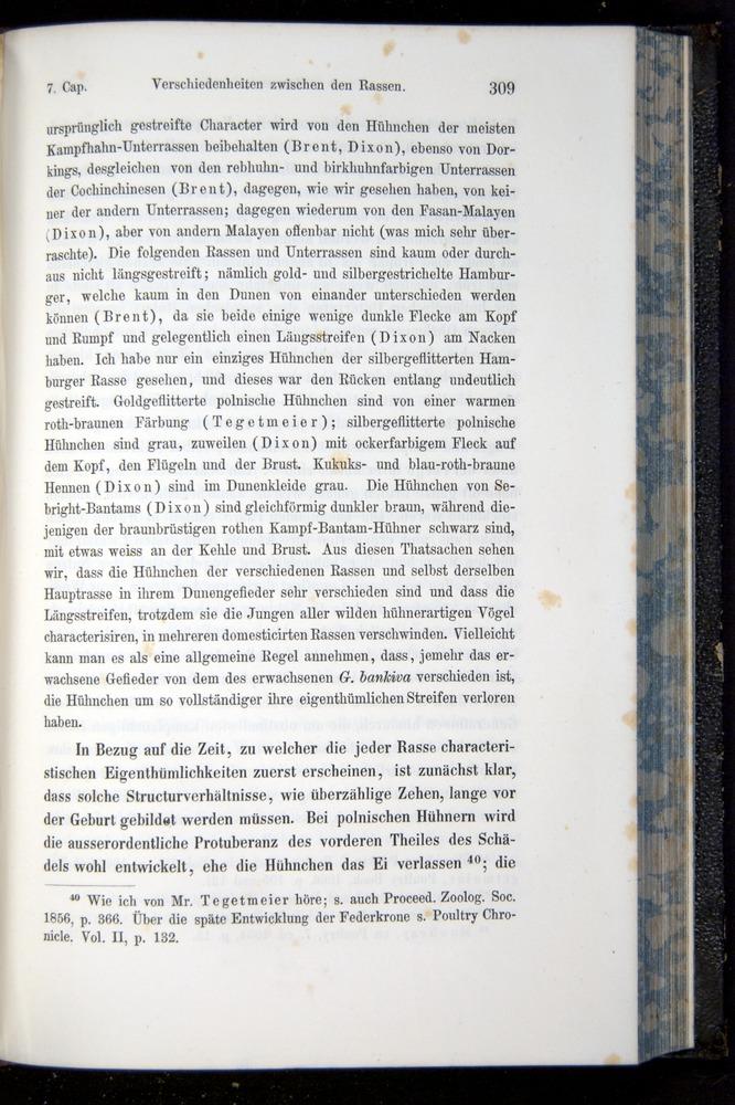 Image of Darwin-F914.1-1868-00309