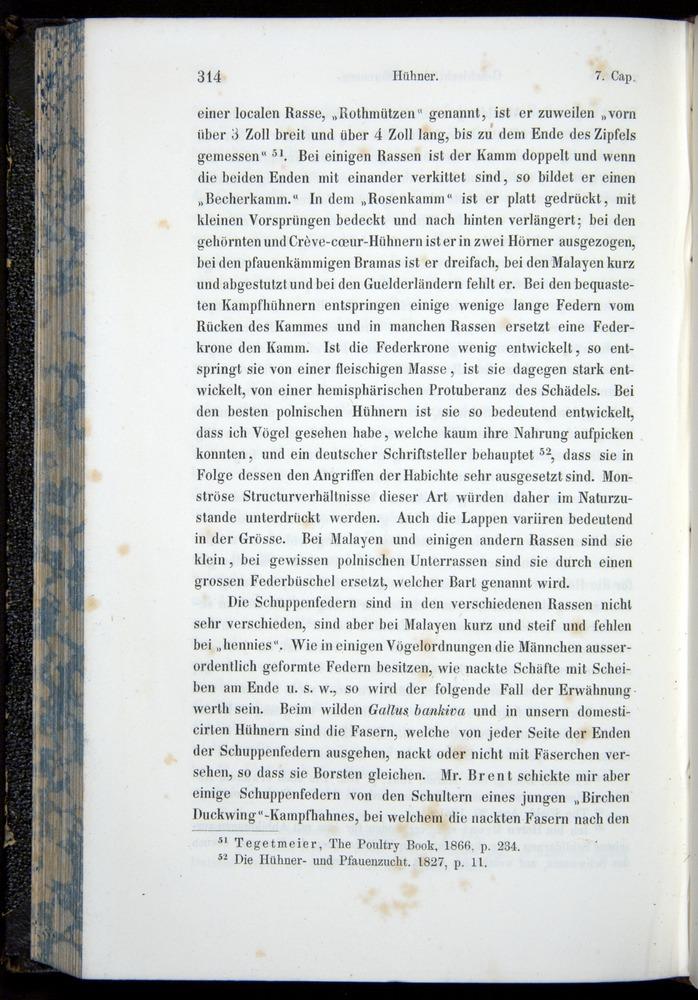 Image of Darwin-F914.1-1868-00314