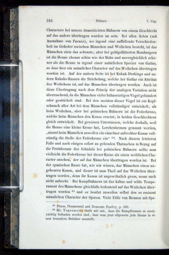 Image of Darwin-F914.1-1868-00316