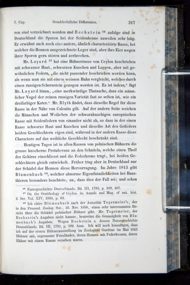 Image of Darwin-F914.1-1868-00317