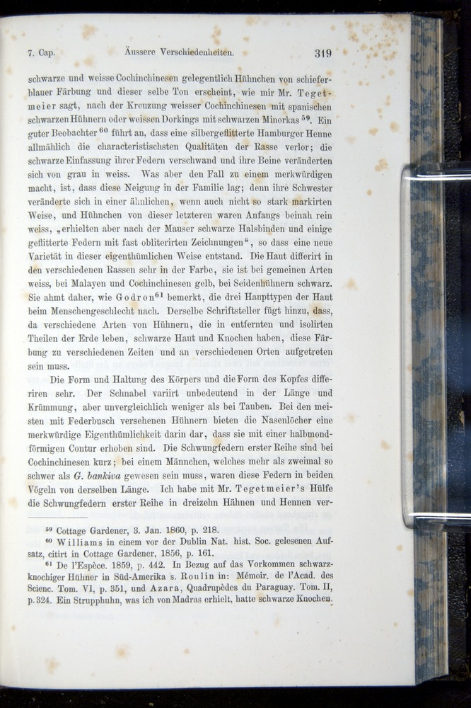 Image of Darwin-F914.1-1868-00319