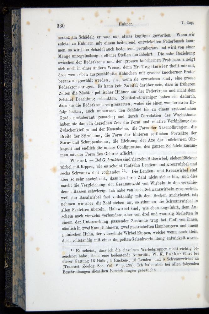 Image of Darwin-F914.1-1868-00330