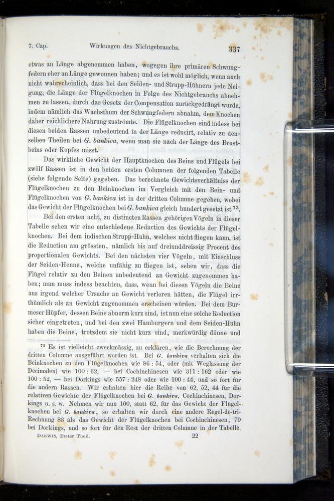 Image of Darwin-F914.1-1868-00337