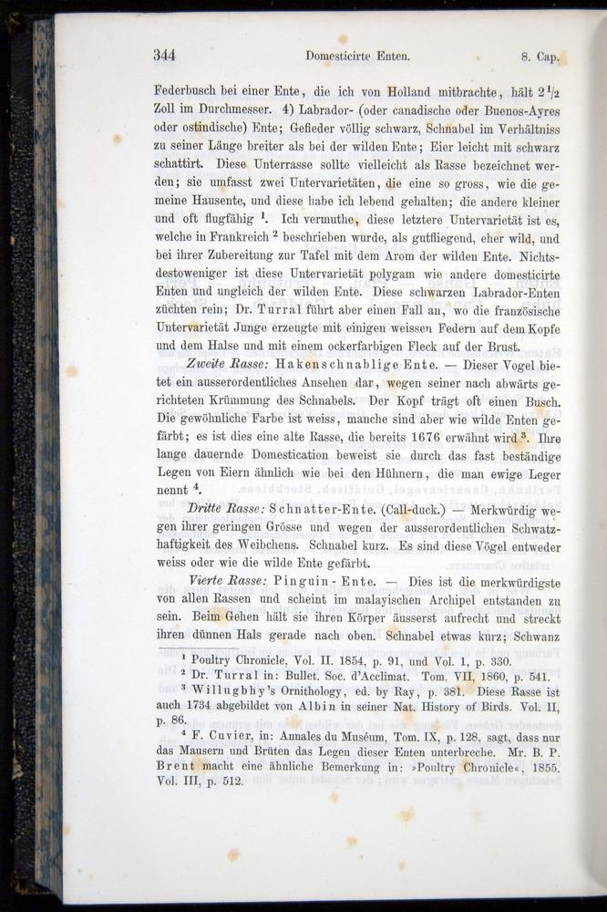 Image of Darwin-F914.1-1868-00344