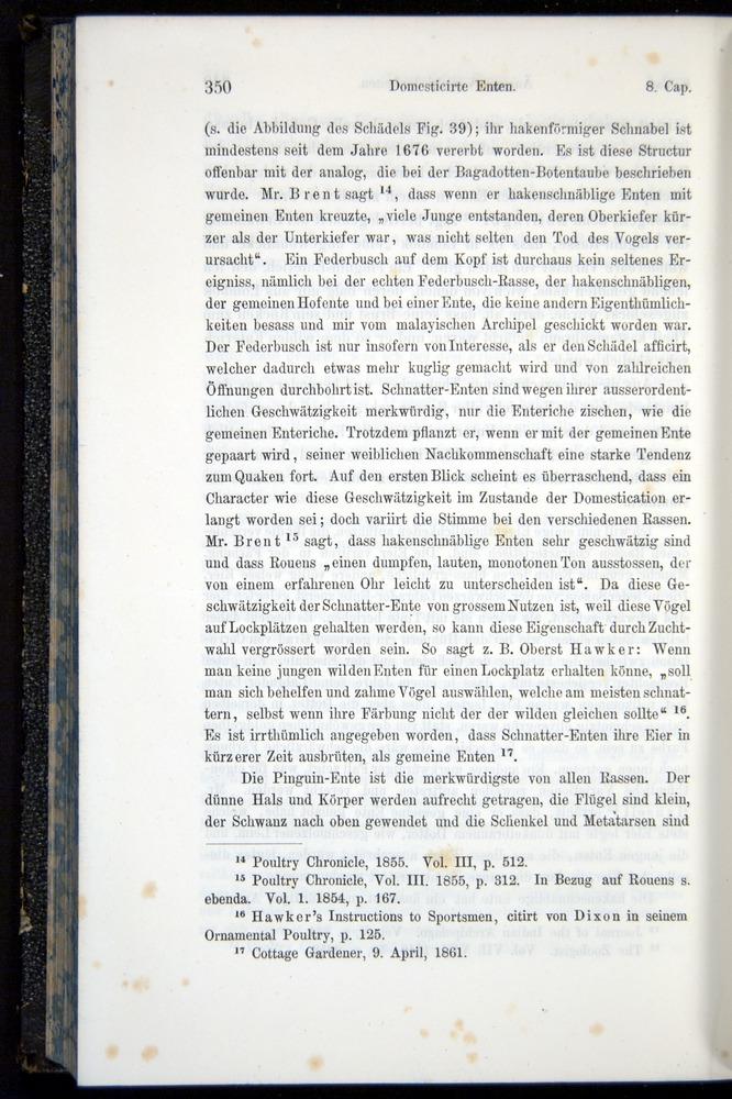 Image of Darwin-F914.1-1868-00350