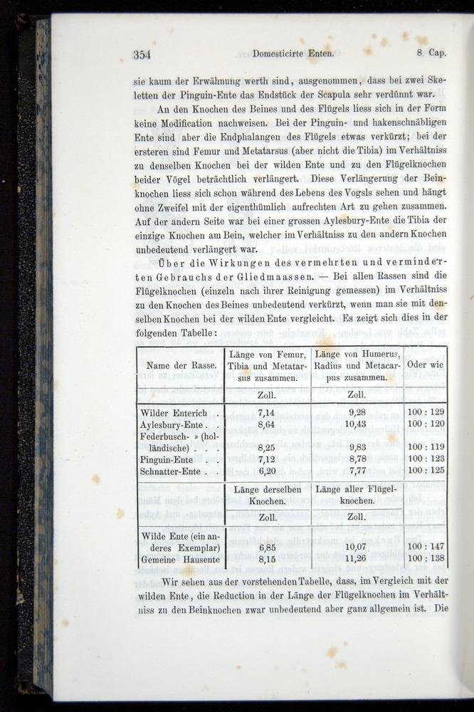 Image of Darwin-F914.1-1868-00354