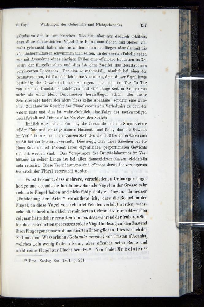 Image of Darwin-F914.1-1868-00357