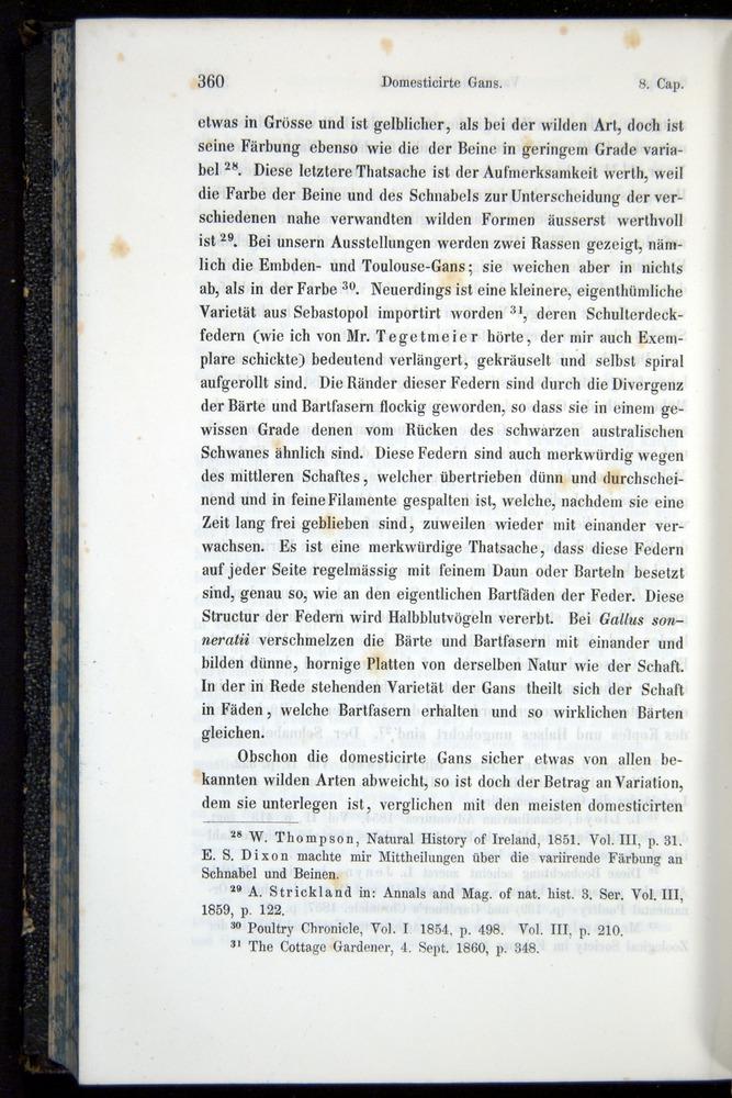 Image of Darwin-F914.1-1868-00360