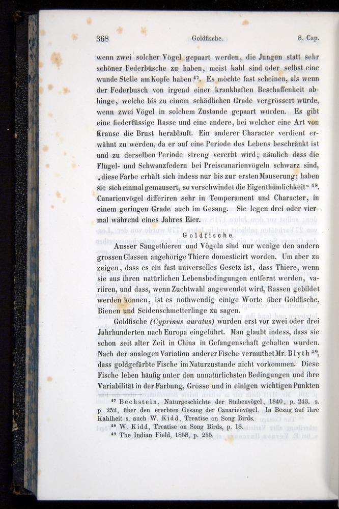 Image of Darwin-F914.1-1868-00368