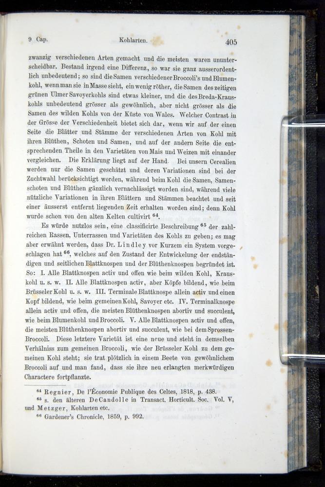 Image of Darwin-F914.1-1868-00405