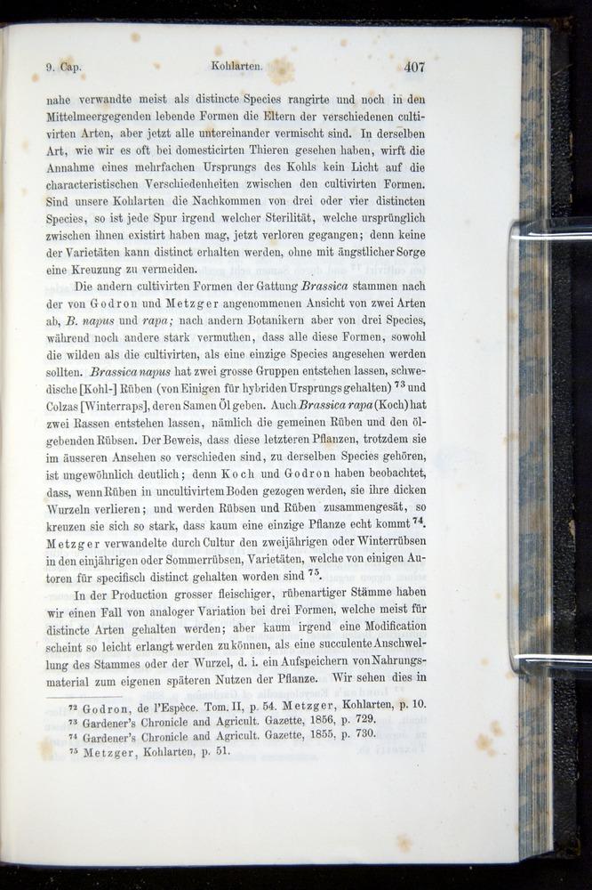 Image of Darwin-F914.1-1868-00407