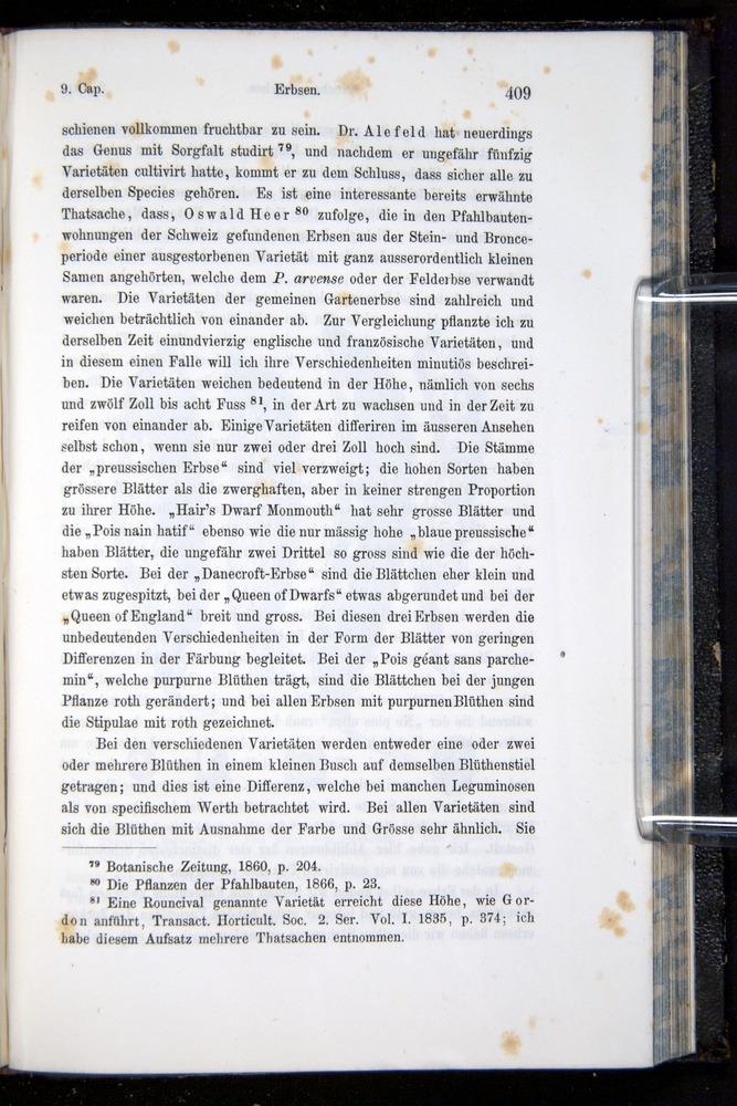 Image of Darwin-F914.1-1868-00409