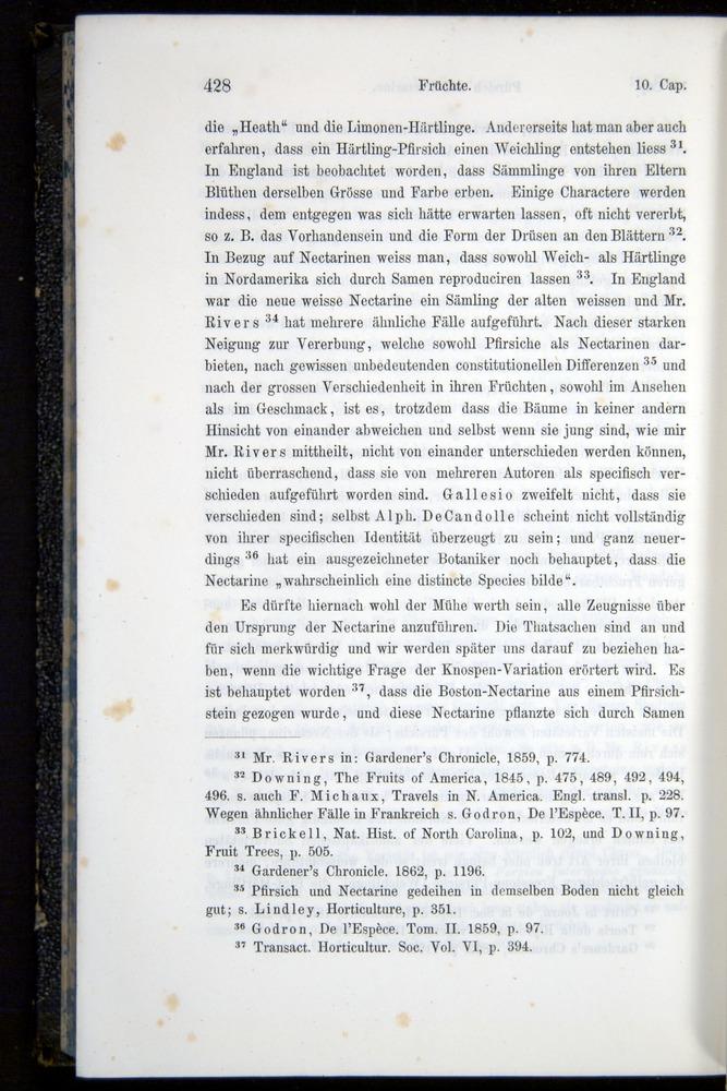 Image of Darwin-F914.1-1868-00428