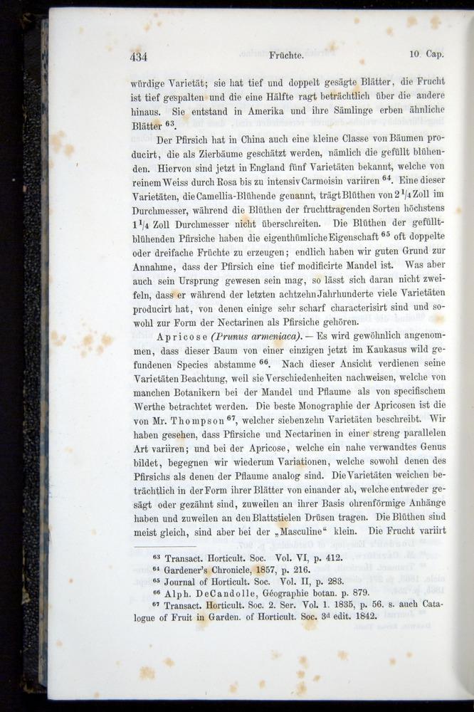 Image of Darwin-F914.1-1868-00434