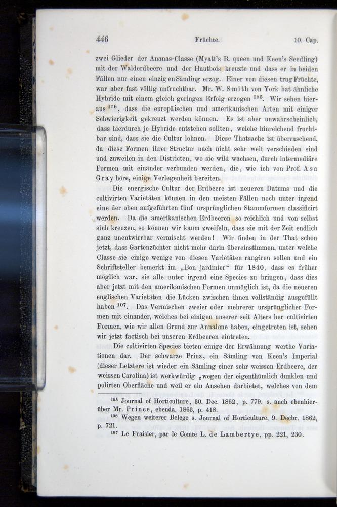 Image of Darwin-F914.1-1868-00446
