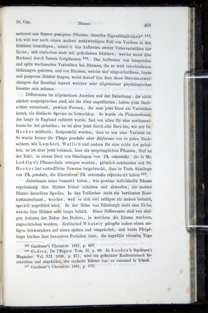 Image of Darwin-F914.1-1868-00461