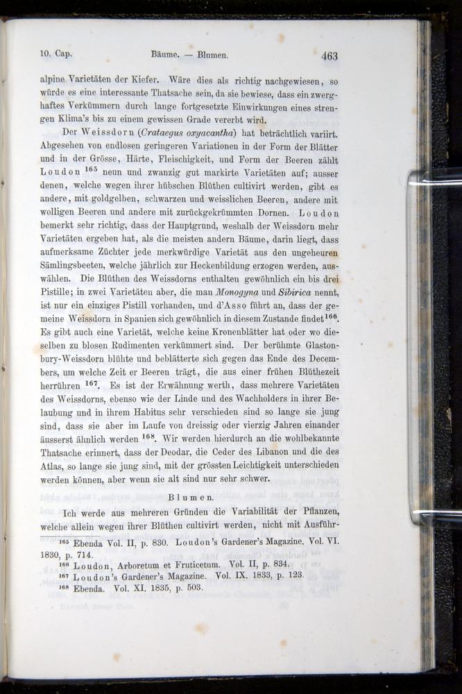 Image of Darwin-F914.1-1868-00463