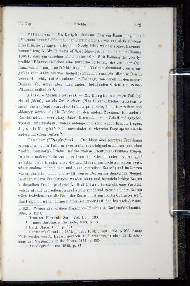 Image of Darwin-F914.1-1868-00479