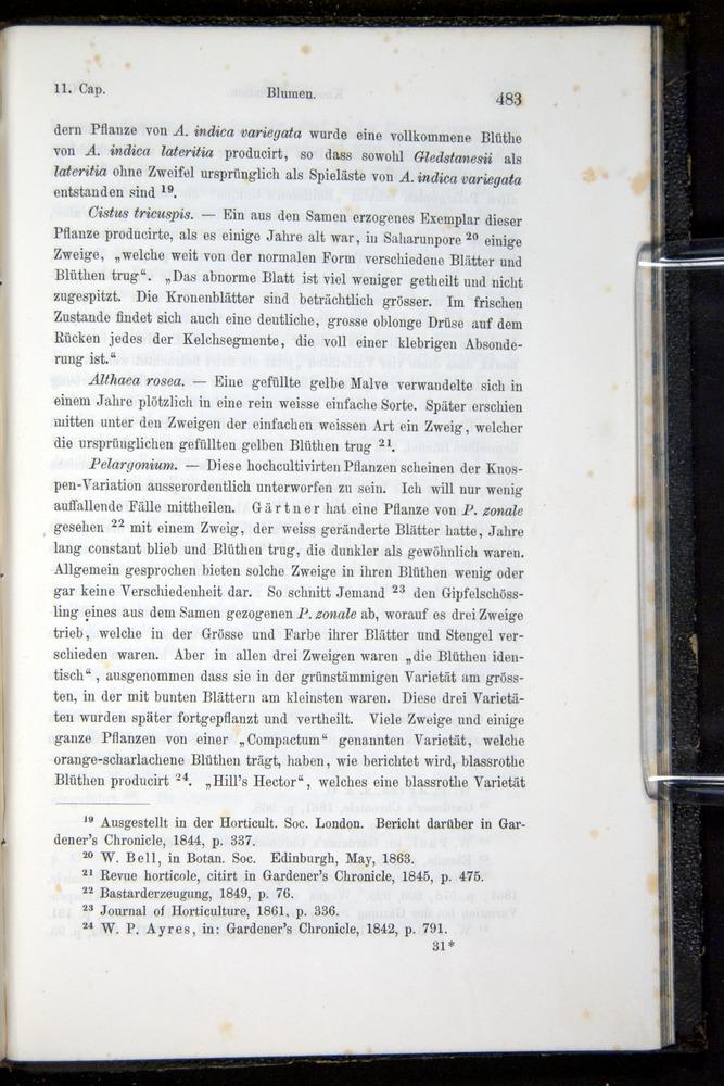 Image of Darwin-F914.1-1868-00483